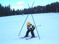 talente jän. 2004
